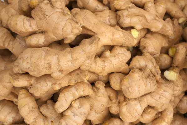 Quality Fresh Ginger For Sale