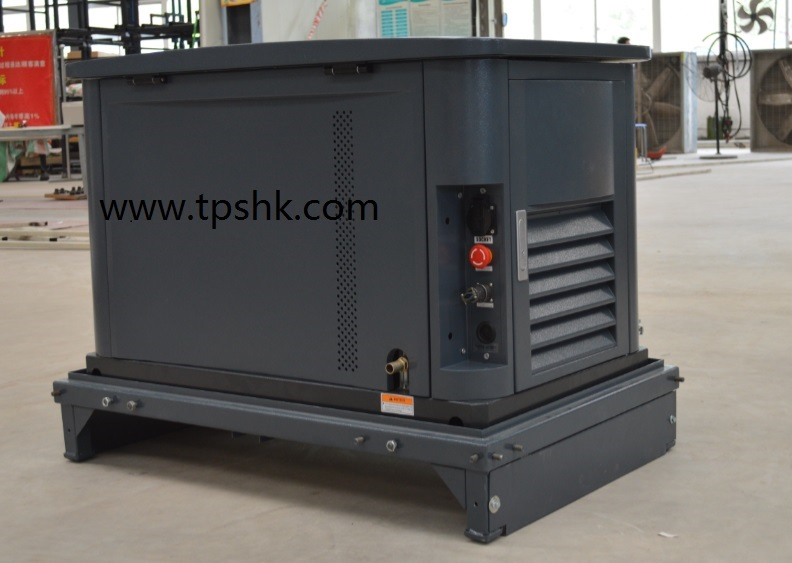 EA16D NG,LPG generator home standby genset