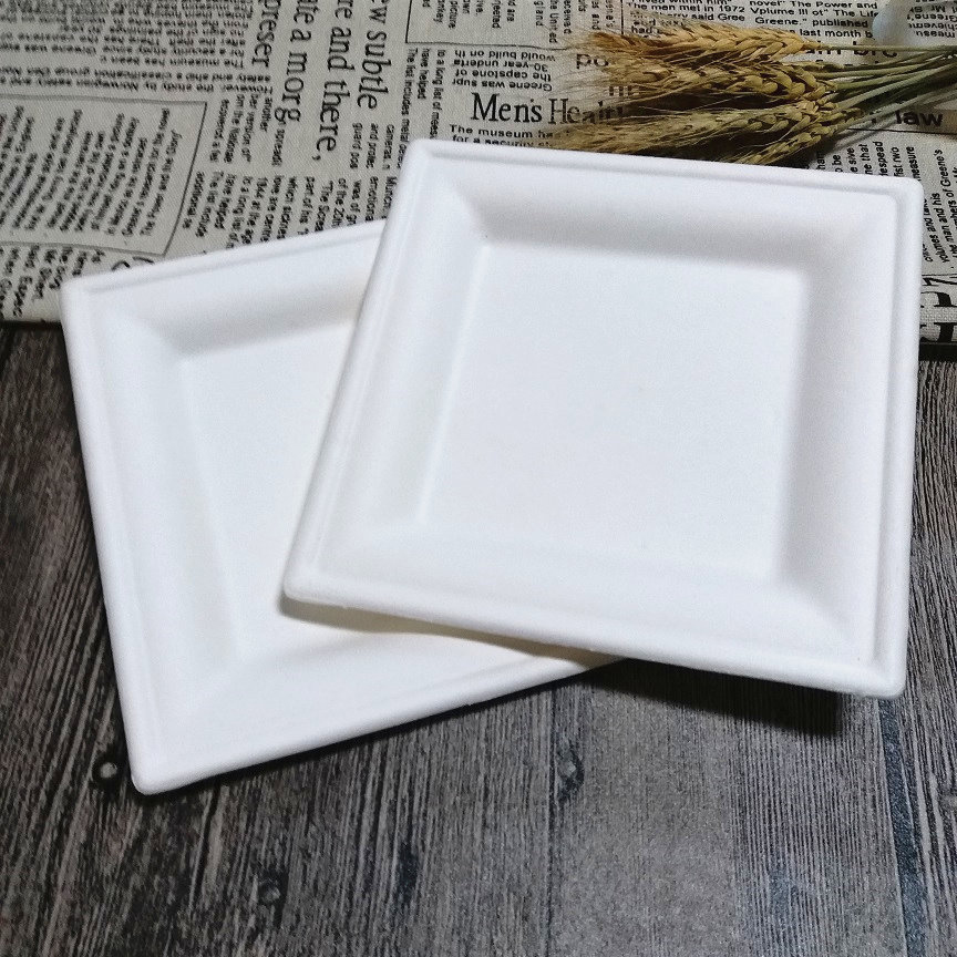Eco Friendly Birthday Party Dinnerware Bagasse Quality Square Biodegradable Plate