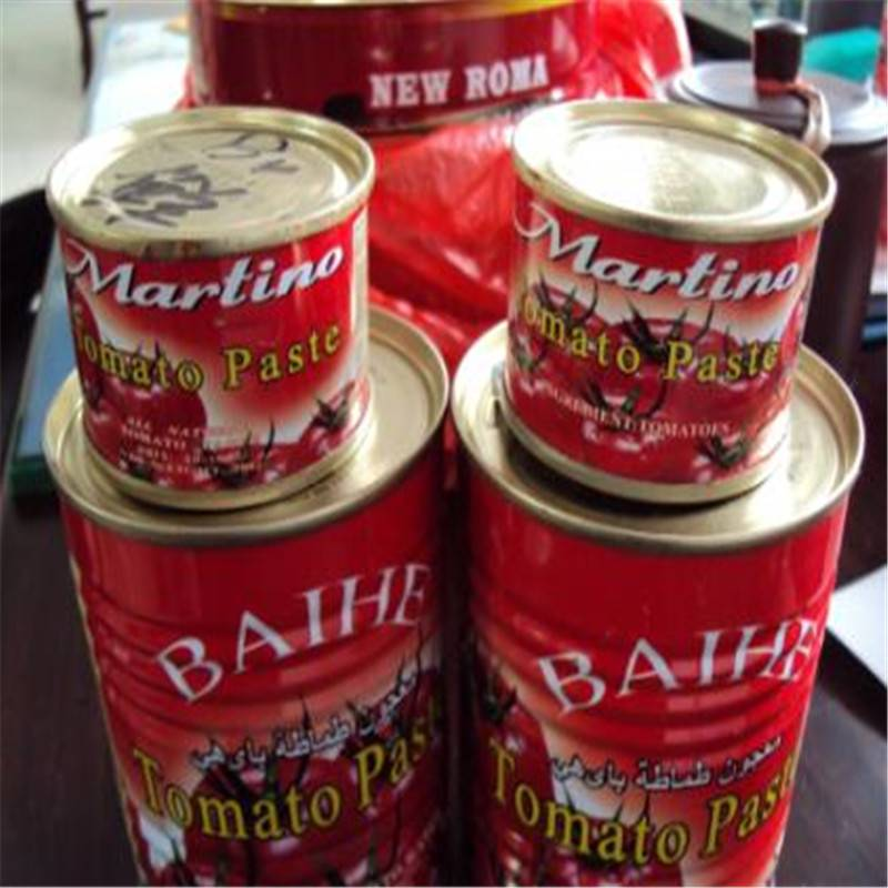 Free Sample Canned Tomato Paste with High Quality