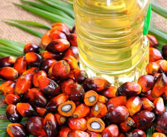 100% PURE REFINED PALM OIL