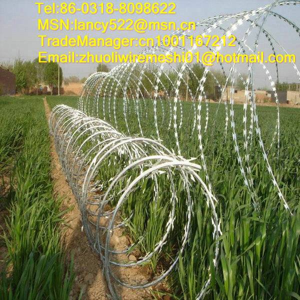 stainless steel razor barbed wire supply in Anping factory