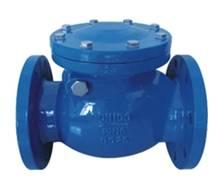 check valve BS5153/ DIN3202 F6