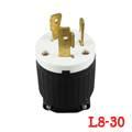 LK-6334 NEMAL8-30P Locking Plug