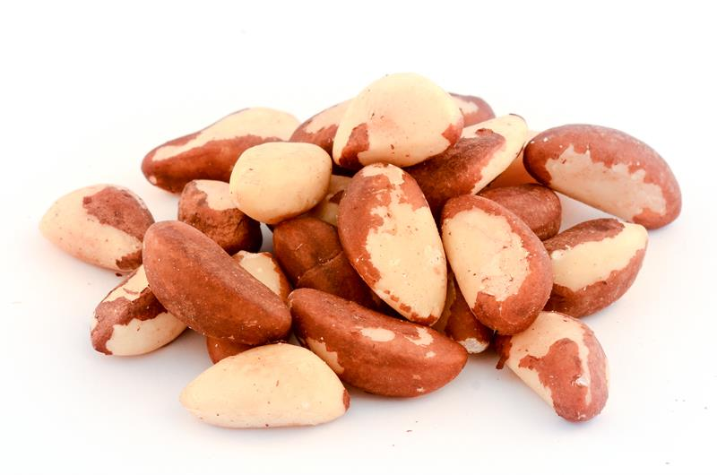 Top Quality Brazil nuts
