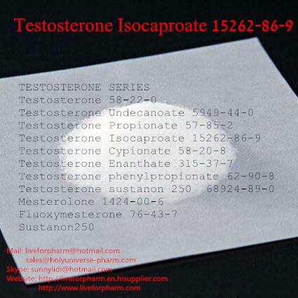 Anabolic Steroid Raw Powder Testosterone Isocaproate Bodybuilding Steroid Test Powder
