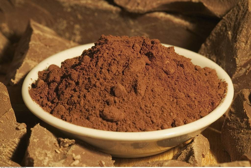 alkalized Cocoa powder for drinks and chocolate