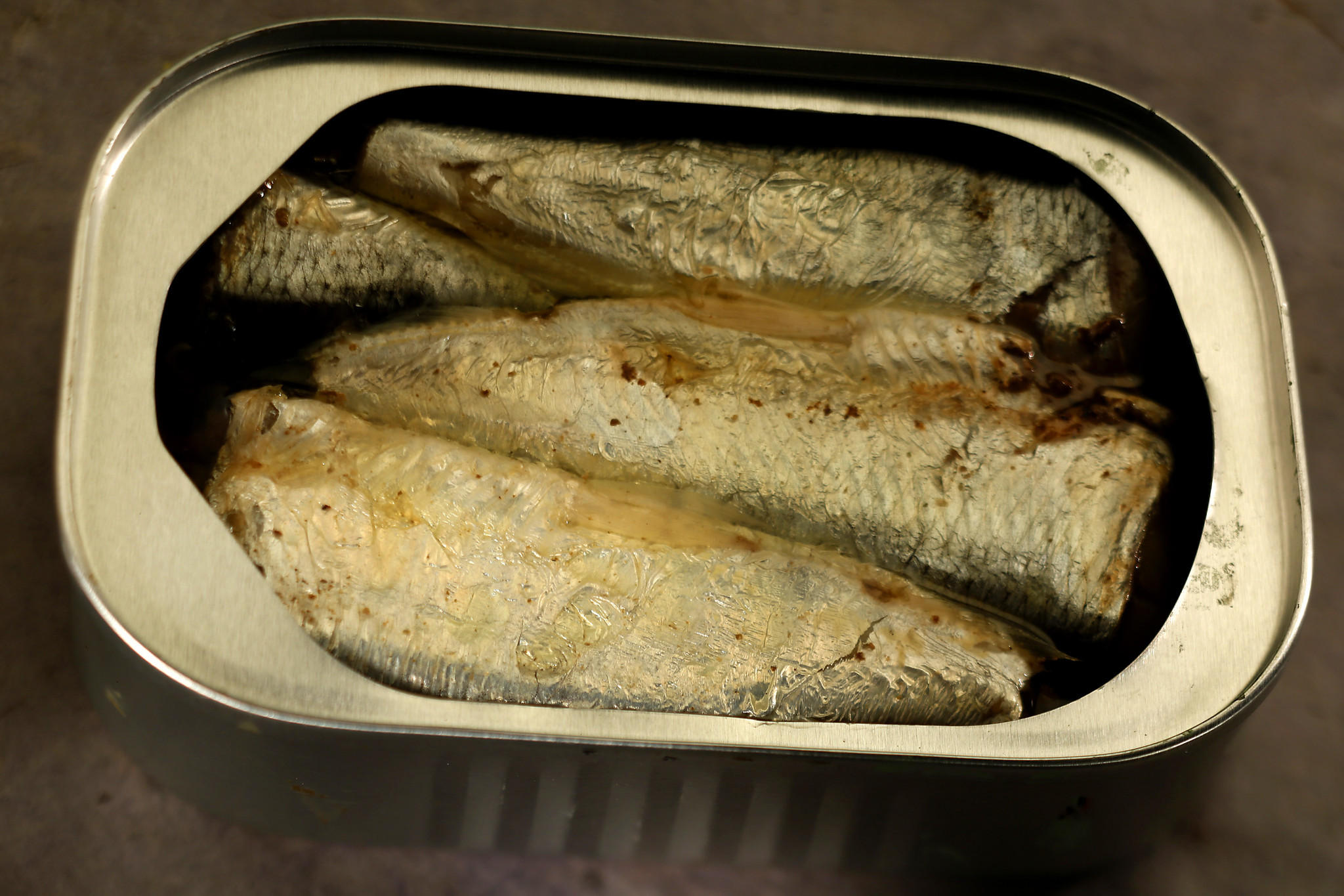 Canned sardine fish for sale