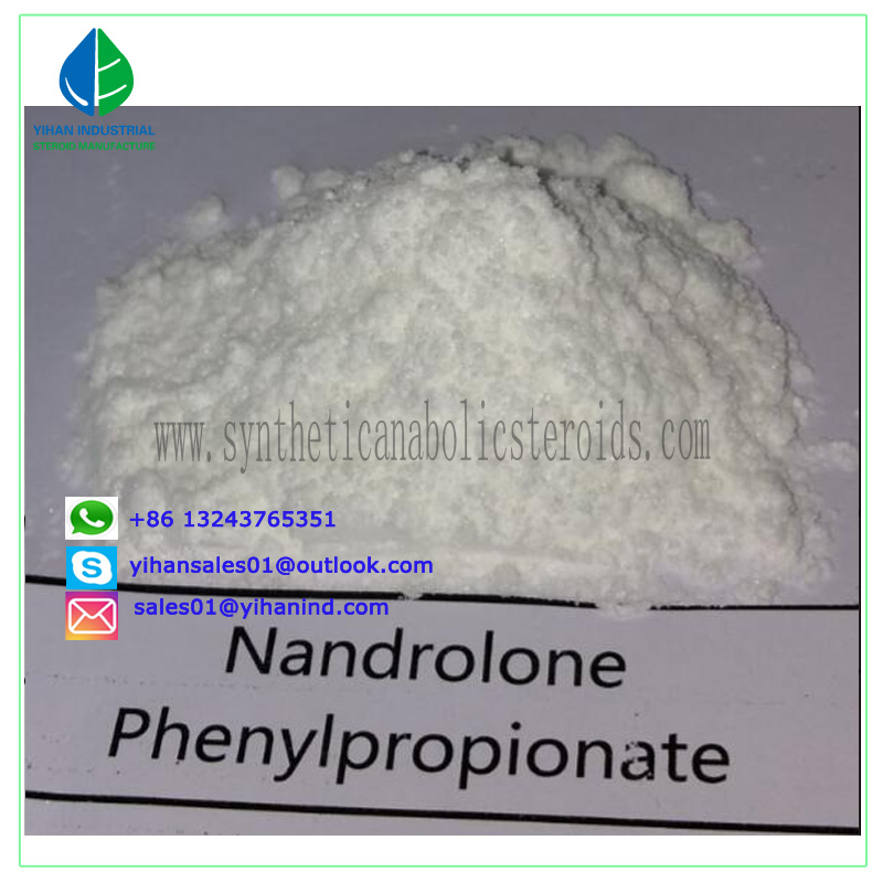 Steroid Raw Powder with High Purity Nandrolone Phenylpropionate for Bodybuilding Judy