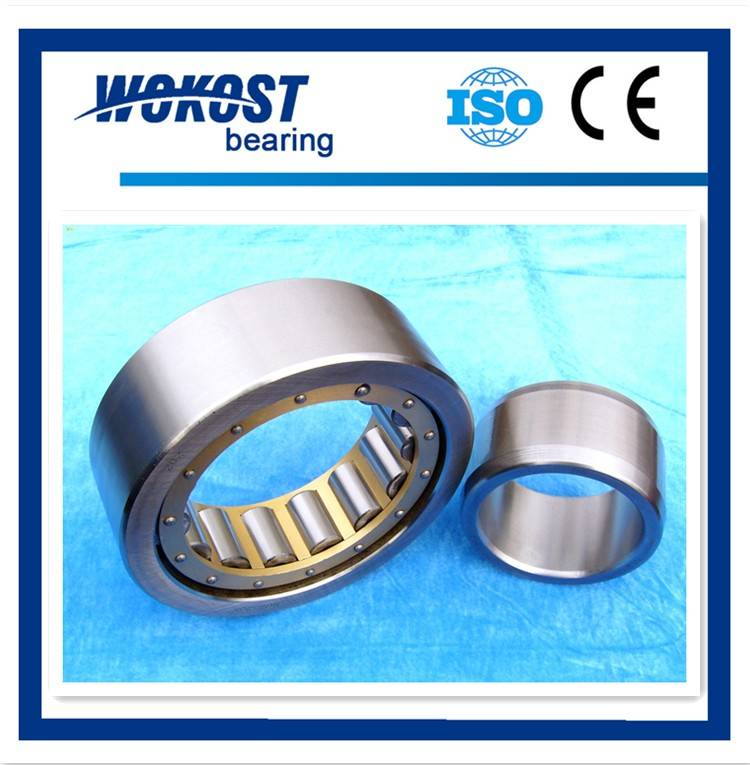 chinese factory cylindrical roller bearing