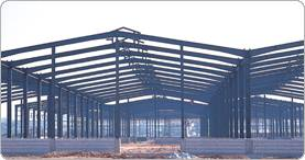 steel structure (work shop)