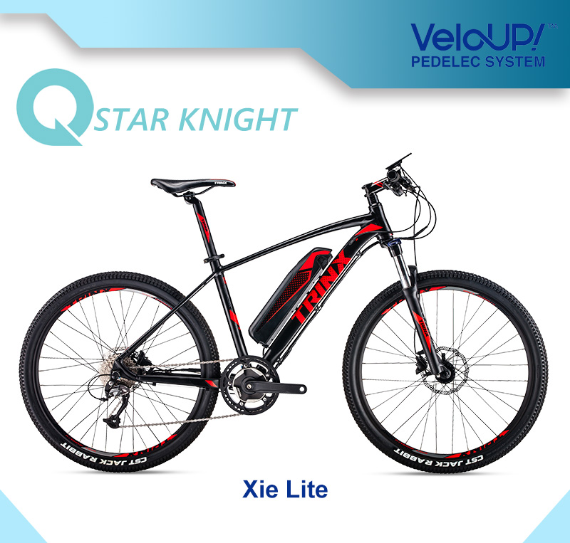 36V Lithium Battery 250W 27speed Mountain Electric Bike