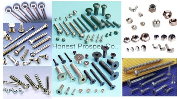 Stainless Steel Nut/ Bolt /Screw