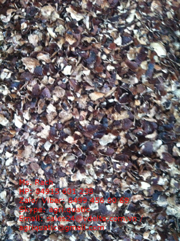 VIETNAM CASHEW HUSK FOR TAINNING PURPOSE ( Skype: agri.quatic)