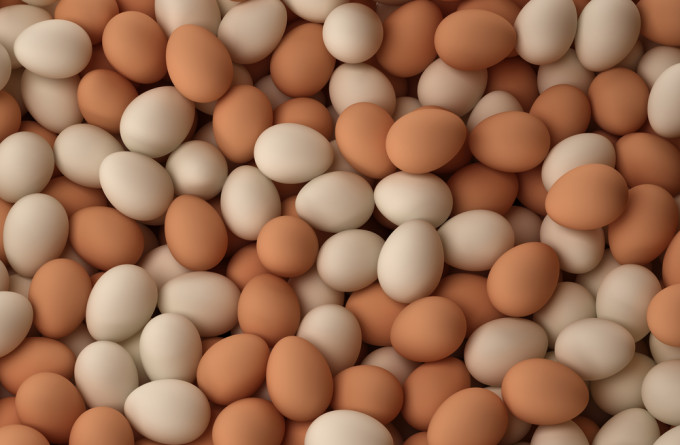Brown And White Chicken  Table Eggs