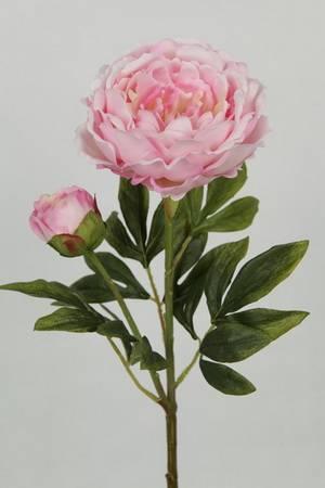 Peony Silk Charity Flower