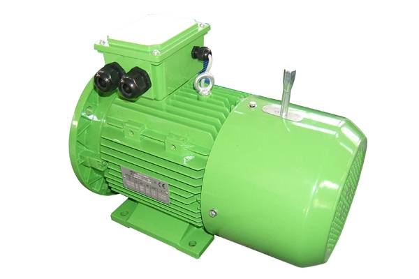 MSEJ Three-Phase Asynchronous Brake Electric Motor