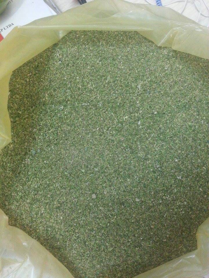 SEAWEED POWDER (ULVA LACTUCA) 2016- 100% ORGANIC FOR ANIMAL FEED AND FERTILIZER