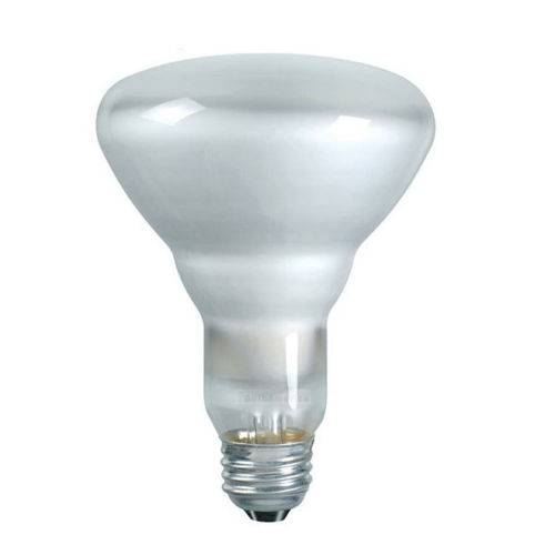 Br30 Incandescent Flood Light Bulb