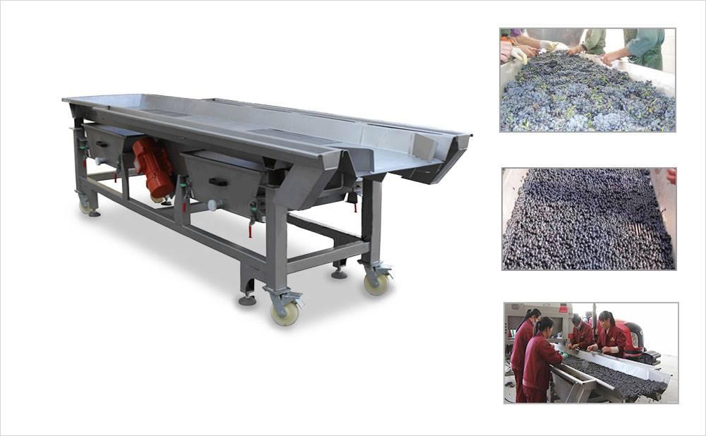 Grape Vibrating Sorting Machine & Grape Sorting Table
