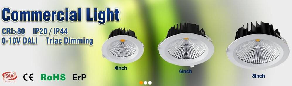 25w adjustable indoor recessed ceiling cob round LED downlight 8 inch led retrofit recessed downligh