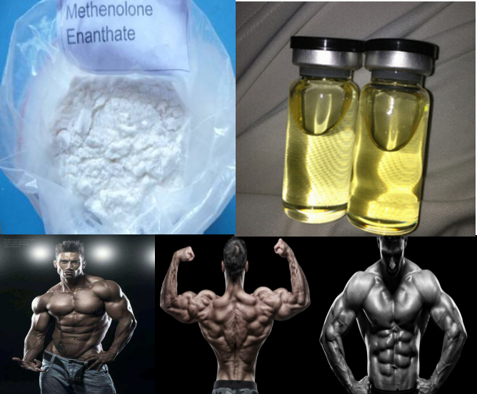 99.0% High Purity Methenolone Enanthate steroid powder for bodybuilding