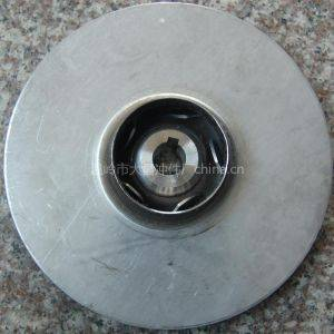 stainless steel impeller 125