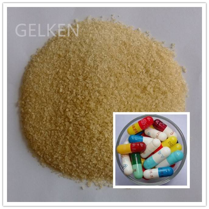 pork pig skin pharmaceutical gelatin for medical capsule