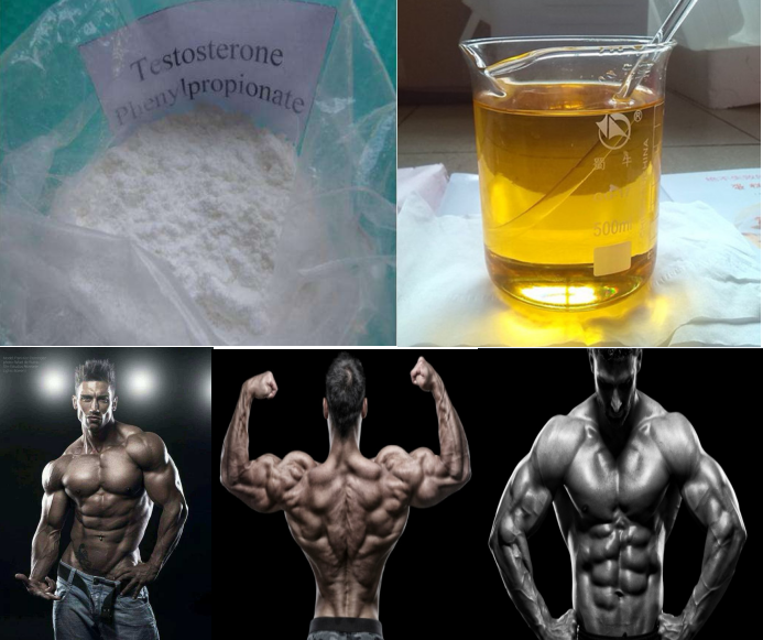 99.0% High Purity Testosterone Phenylpropionate Test PP raw steroid powder for muscle building