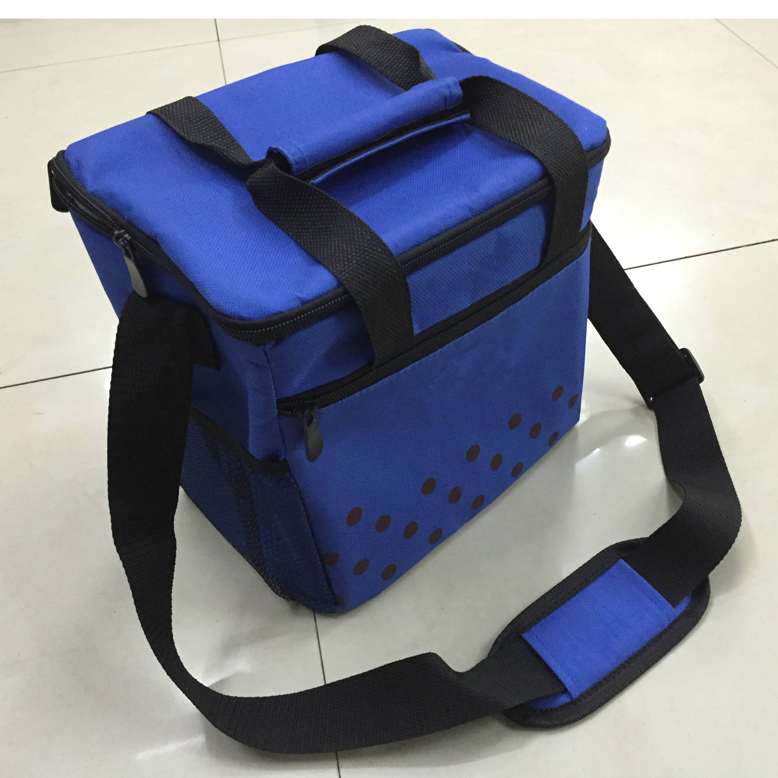 Customized 600D polyester insulated cooler bag manufacture