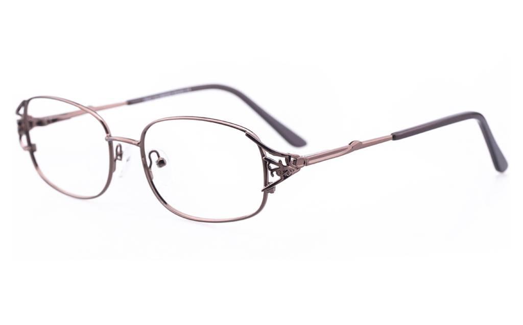 Brown 1110 Full Rim Oval Metal-Stainless Steel Glasses