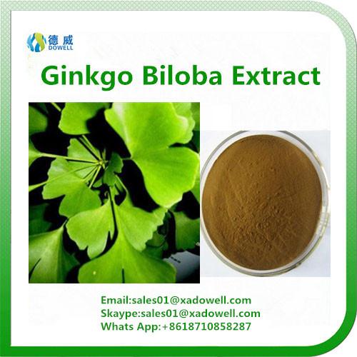 Natural Ginkgo Biloba Extract 24%Flavones