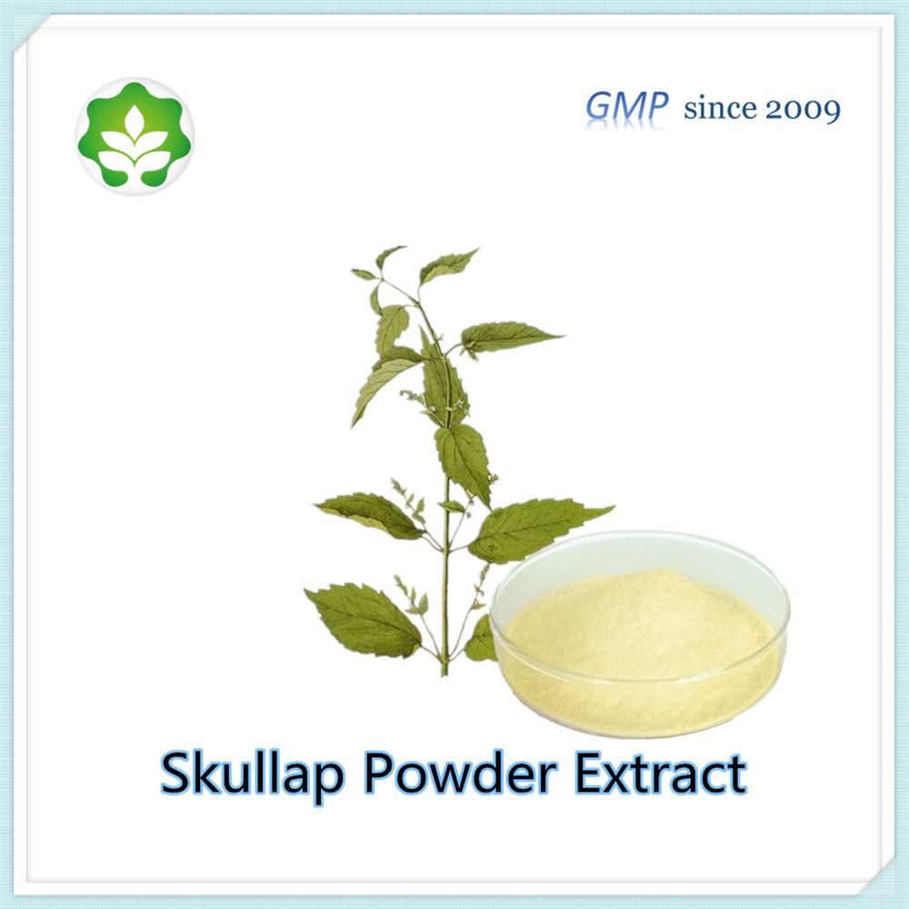 radix scutellariae powder extract p.e for pharmaceutical use
