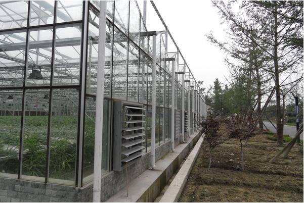 Glass Greenhouse (BZ-GG-1403)