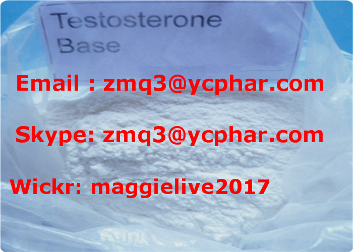 Muscle Building Androgen Injectable Anabolic Steroids Testosterone Base Powder CAS 58-22-0