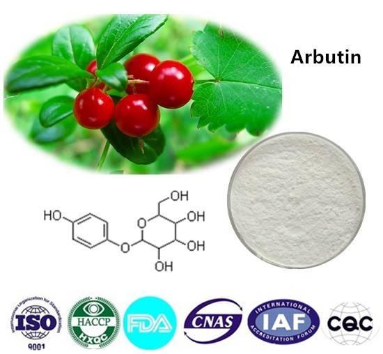 Arbutin 98% CAS NO:497-76-7 1kg/bag