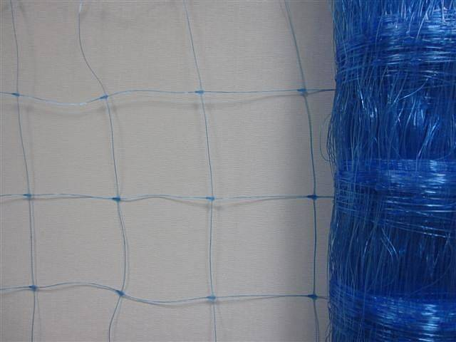 Pea and bean net plant support net vegetable climbing mesh fence