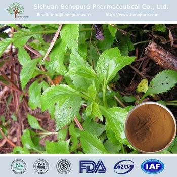 Cure dysmenorrhea, prevent leucorrhea,10:1 20:1, PATRINIA INTERMEDIA EXTRACT