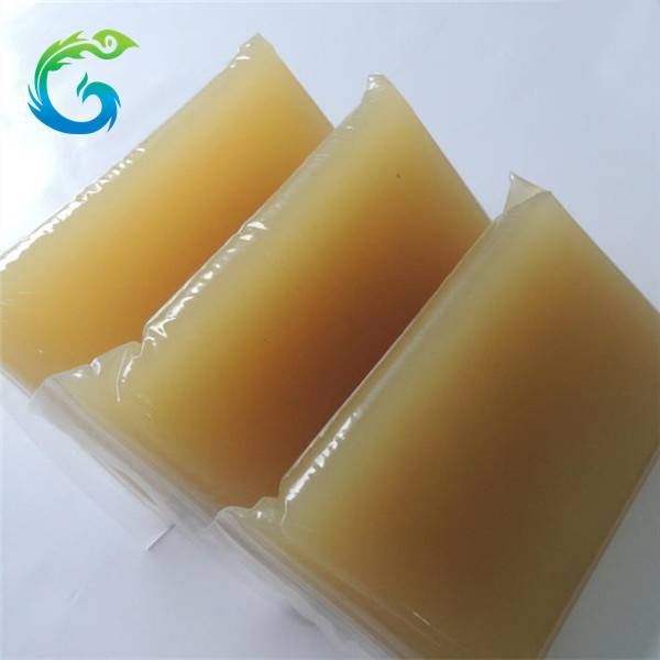Hot melt glue animal jelly glue for carton