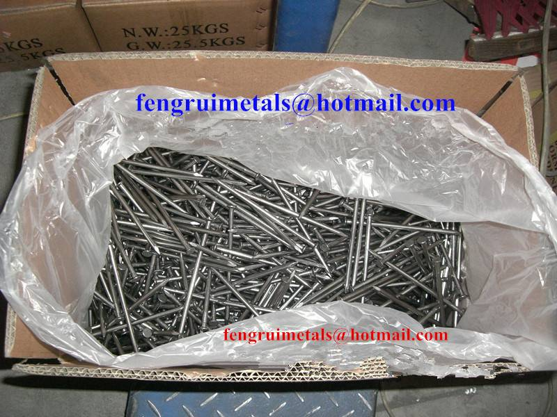 High quality polished iron wire nails