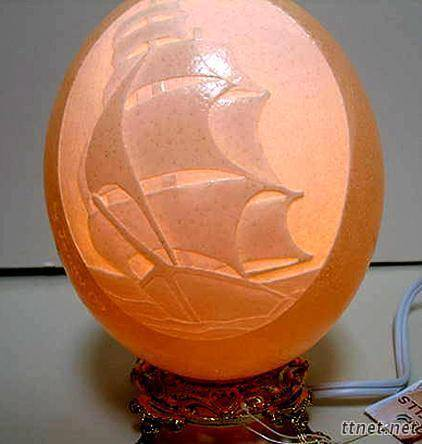 ostrich empty egg shell