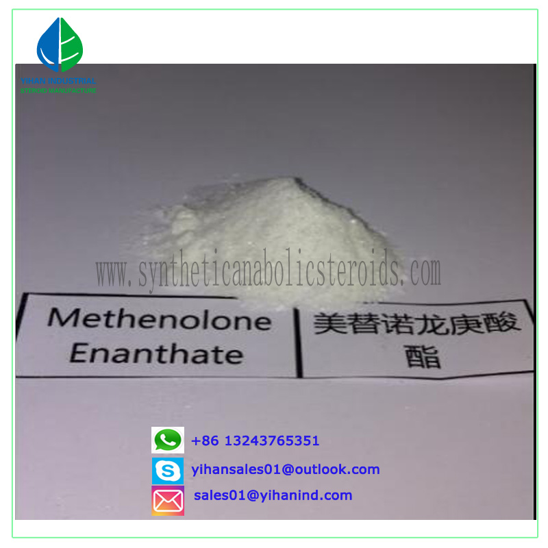 Pharmaceutical Manufacturer sales CAS No. 303-42-4 Methenolone Enanthate steroids powder Judy