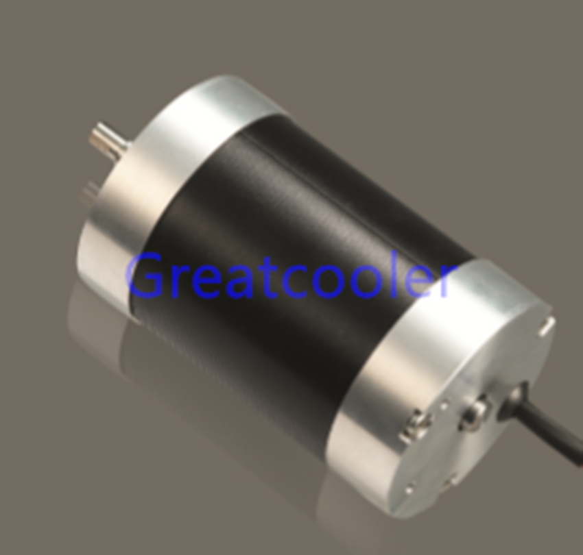 WBDM56100 56mm Brushless DC Motors