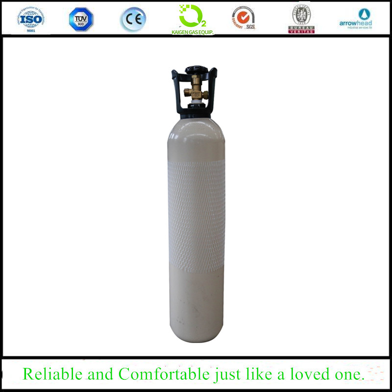 10L Portable Seamless Steel Gas Cylinder