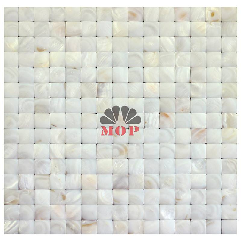 mural shell mosaic wall tile kitchen