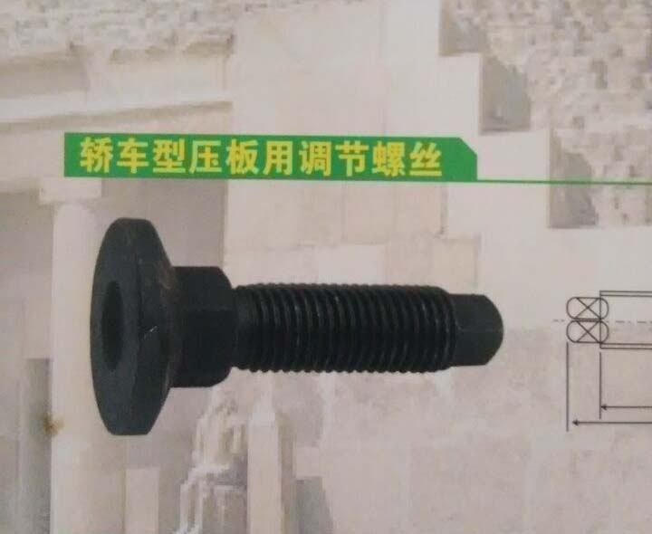 adjustable screws hardened bolts for car type molding clampings