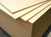 birch plywood/ Birch Commercial Plywood