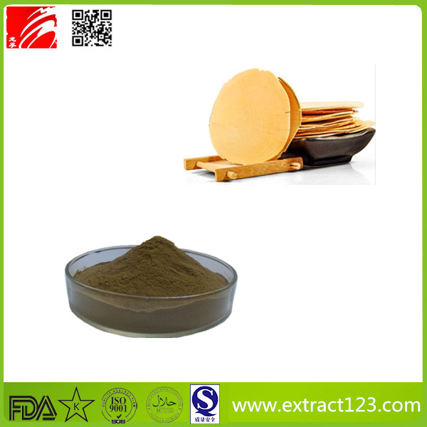High Quality Tongkat Ali Extract Powder