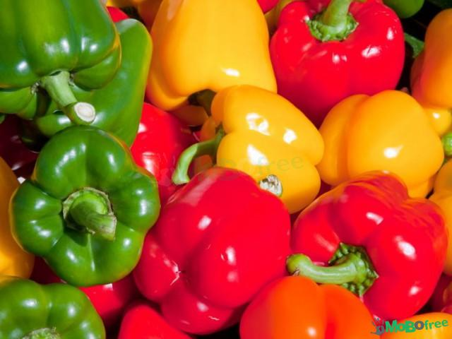 Fresh Green bell capsicum pepper