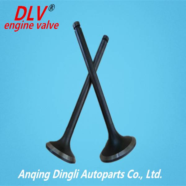 Mitsubishi Truck Engine Valves for 6D10 6D11 6D14T 4D30